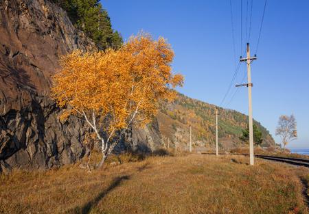 Autumn on the Circum-Baikal Railway Imagens
