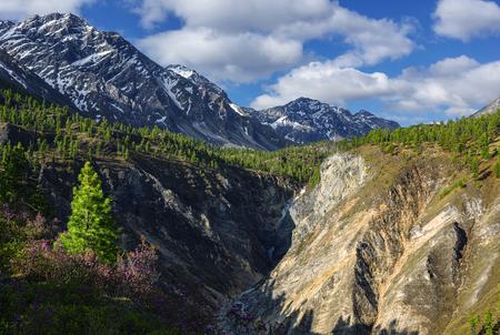 River Canyon Arhat