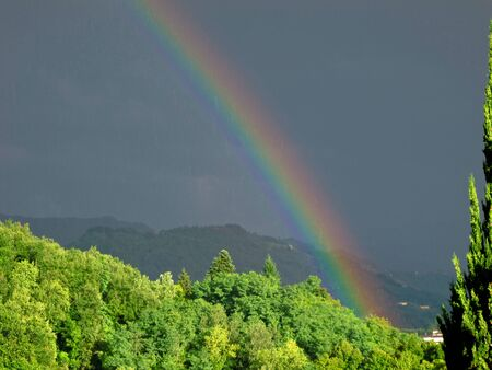 part of a intense rainbow above a forest in northern italy