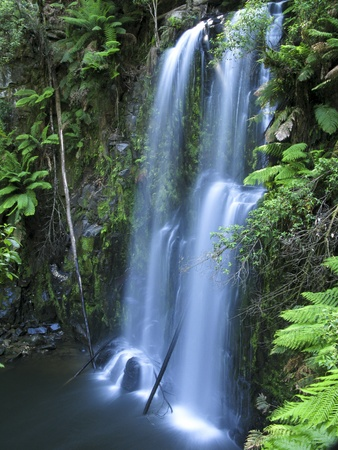 medium sized water fall in a rain forest in australia Stock Photo - 9763705