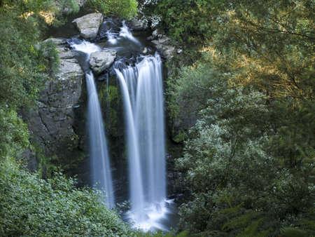 medium sized water fall in a rain forest in australia photo