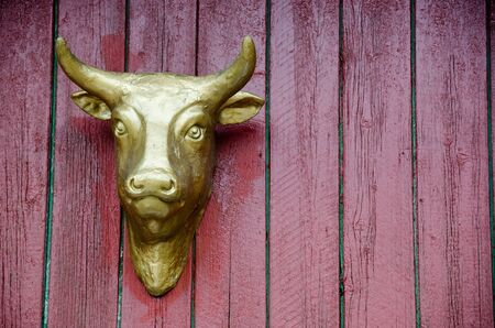 Golden head of a cow on a red wall as advertisement for a butcher Stock Photo