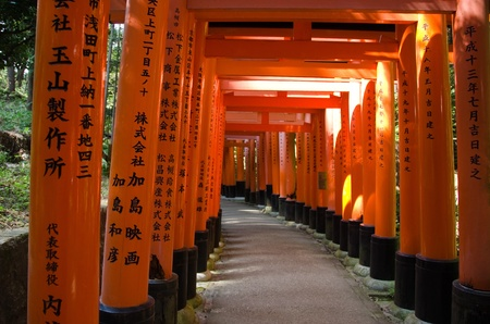 torii: Torii Gates at the Fushimi Inari Taisha Shrine in Kyoto, Japan