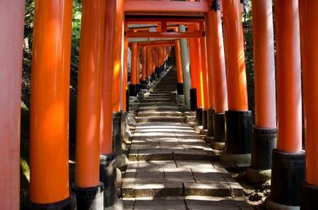 Torii Gates at the Fushimi Inari Taisha Shrine in Kyoto, Japan