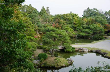 ninnaji: japanese garden inside the Ninna-ji temple in Kyoto