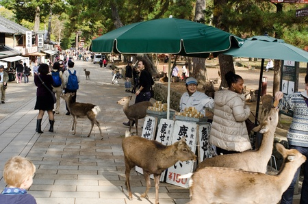 Booth in Nara where it is possible to buy food for the Sika deers