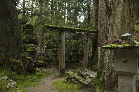 Okunoin cemetery at Mount Koya and Koya-san in Wakayama, Japan. World Heritage Site Stock Photo - 14418681