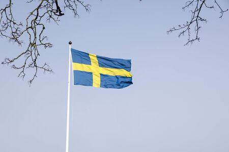 Swedish flag in the wind on front of a blue sky photo