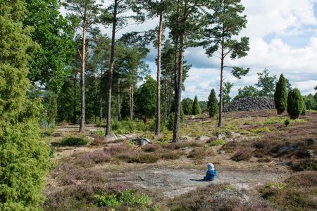 heathland: Baby sitting in a swedish forest with heathland landscape Stock Photo
