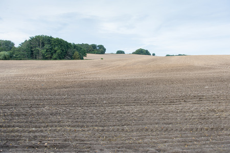 ploughed field: Brown ploughed field under cloudy sky after harvest with hills and forest