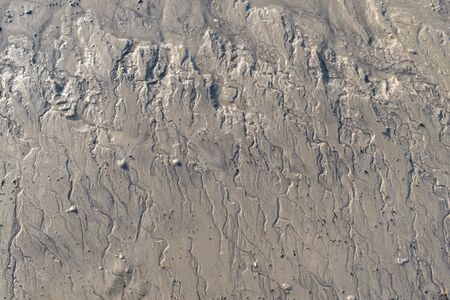draining: Small tidal creeks on a mud flat with draining water creeks
