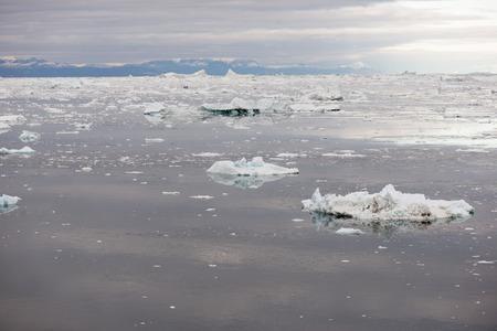 icefjord: Arctic seascape in Greenland around Disko Island