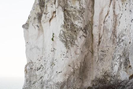 Detail of a chalk cliff at moens klint in Denmark