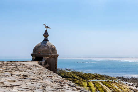 Peniche, Portugal - Seagull resting on a small tower by the coast Banco de Imagens