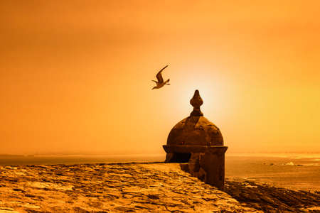 Peniche, Portugal - Seagull flying off a small tower by the coast at sunset