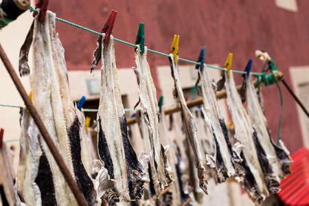 Peniche, Portugal - Fish drying in open air in front of a fishermans house