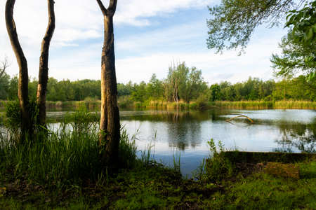 Walenhoek, Niel, Belgium:  Beautiful small lake at golden hour Banco de Imagens