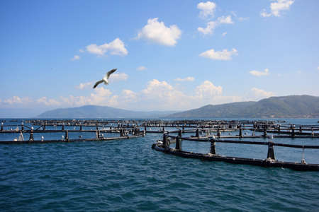 Aquaculture coast Stock Photo