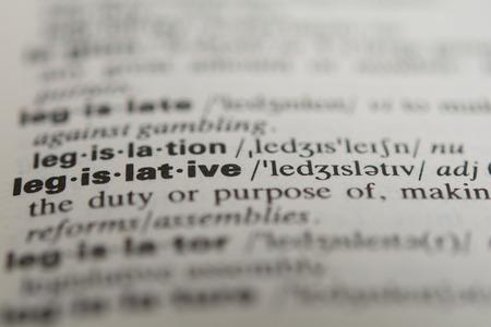 legislative: Definition of the word legislative, close up