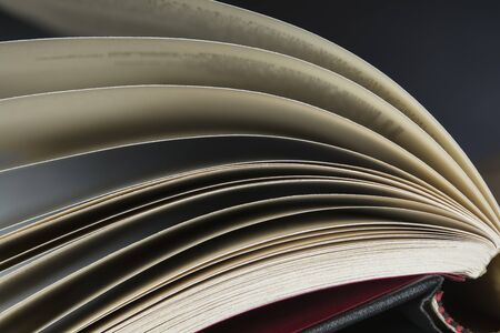 background information: Close up at the pages of an open book