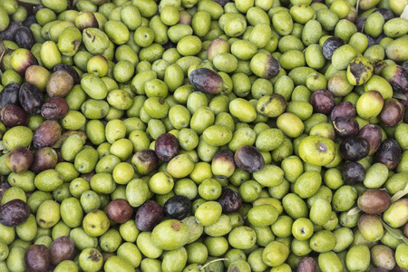 Pattern of fresh olives as a background concept Standard-Bild