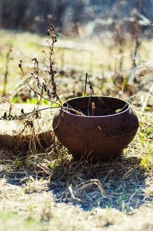 forgot: vintage antique forgot pot in the garden with dry grass Stock Photo