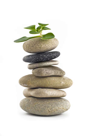 plantlet: Green Life - balanced stone tower with plant on the top over white Stock Photo