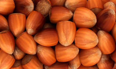 Filbert nuts texture or background. CG render photo