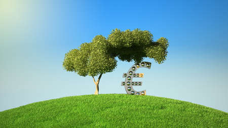 Euro symbol under tree on green fileld. Blue sky is over Stock Photo - 7843834