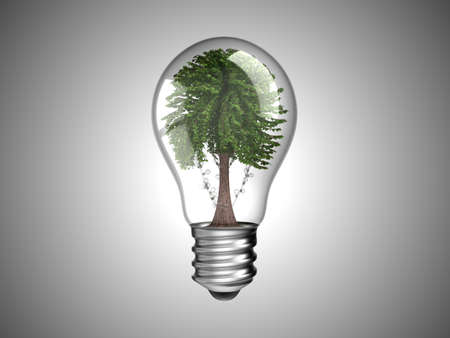 Lightbulb with green tree inside it. Environment and renewable energy. Over grey Stock Photo - 8220200