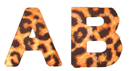 Leopard fur A and B letters isolated over white background photo