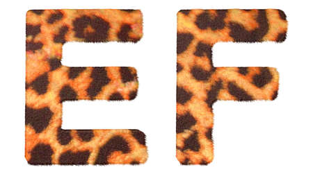 Leopard fur E and F letters isolated over white background photo