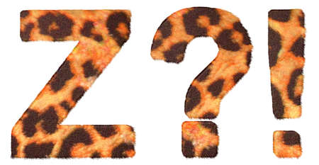 Leopard fur font Z and Wow, What symbols isolated over white photo