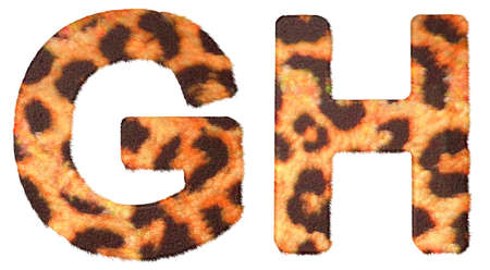 g spot: Leopard fur G and H letters isolated over white background
