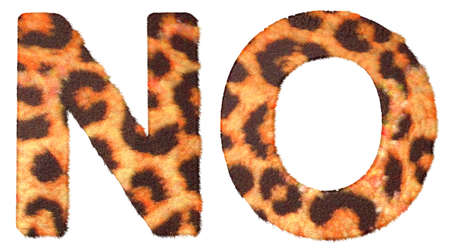 Leopard fur N and O letters isolated over white background photo