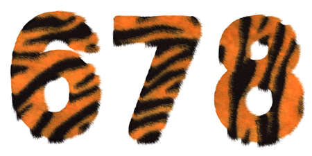 6 7: Tiger fell 6 7 and 8 figures isolated over white