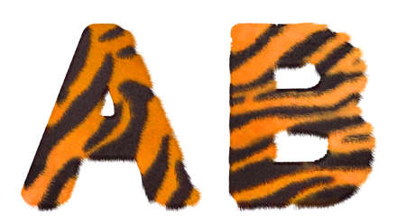 Tiger fell A and B letters isolated over white background photo