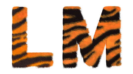 fell: Tiger fell L and M letters isolated over white background