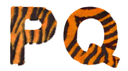 Tiger fell P and Q letters isolated over white background photo