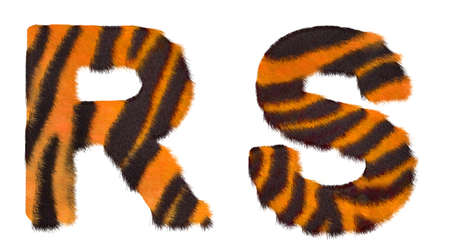 fell: Tiger fell R and S letters isolated over white background