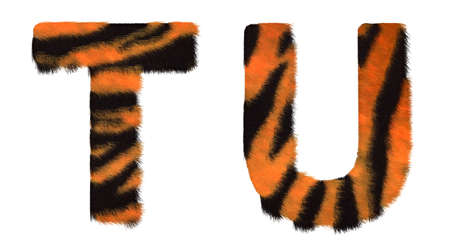 chr: Tiger fell T and U letters isolated over white background Stock Photo