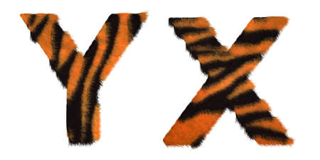 fell: Tiger fell X and Y letters isolated over white background Stock Photo