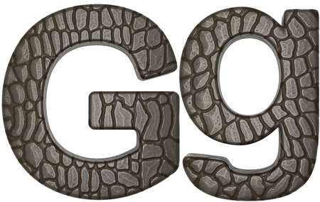 Alligator skin font G lowercase and capital letters isolated on white photo