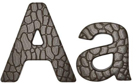 cocodrilos: Alligator min�sculas de a la fuente y may�sculas aislados en blanco de la piel