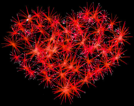 love explode: Fireworks heart shape for Valentines Day over black