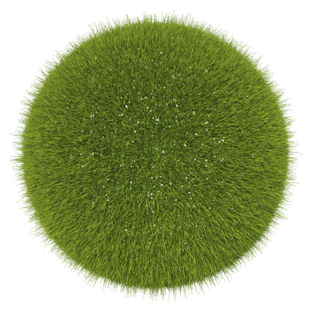 World of grass and flowers: green globe isolated on white Stock Photo - 15281537