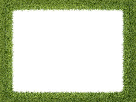 Green fresh grass frame: ecology and environment. Isolated on white Stock Photo - 16053799