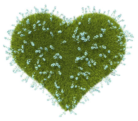 Green grass heart shape with forget-me-not flowers over white background Stock Photo - 16053844
