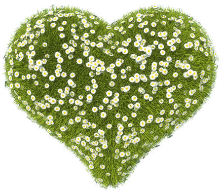 Green grass heart shape with camomile flowers isolated on white Stock Photo - 16450585