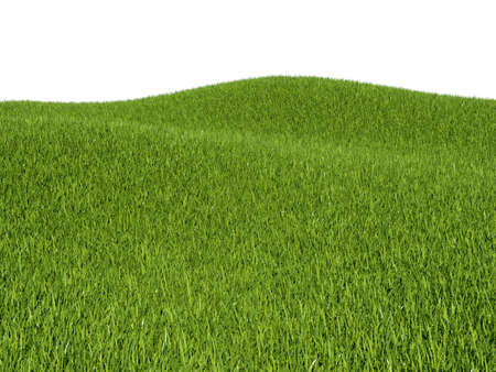 Green grass meadows and hills and white background Stock Photo - 16450591